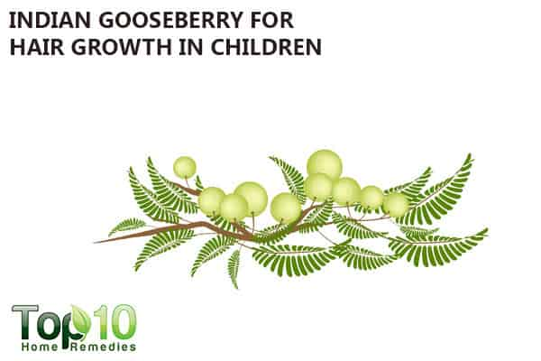 indian gooseberry for hair growth in kids